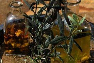 Receta de aceite de setas
