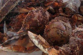 Receta de cangrejos asados