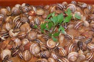 Receta de caracoles al tomillo