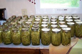 Receta de conserva de judías verdes
