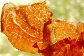 Receta de crujiente de jamón en microondas