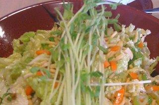 Receta de ensalada de berros y zanahoria