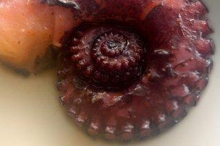 Receta de ensalada de pulpo con setas