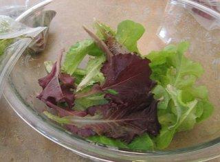 Receta de ensalada de sepia y salsa de yogur