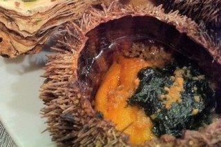Receta de erizos de mar al natural