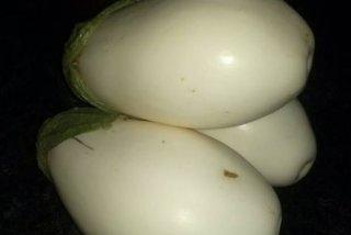 Receta de falsas patatas de olot