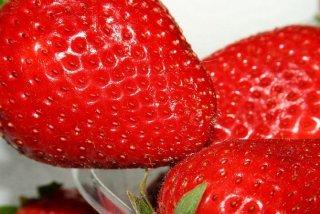 Receta de fresas romanov
