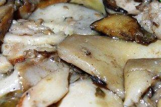 Receta de hongos salteados con ajo, perejil y vino blanco