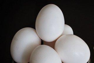 Receta de huevo gratinado