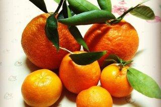 Receta de mandarinas con leche condensada y licor de avellana