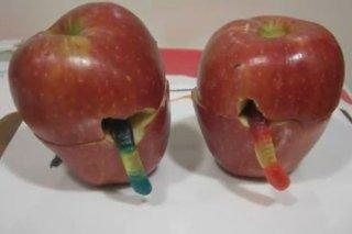 Receta de manzanas podridas con gusanos
