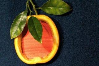 Receta de naranjas rellenas de sorbete