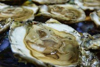 Receta de ostras rockefeller