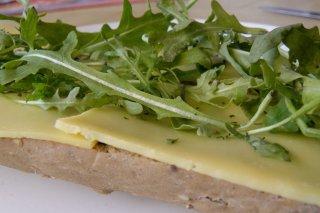 Receta de pan francés con queso