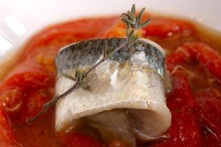 Receta de sardina marinada sobre zorongollo