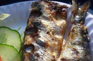 Receta de sardinas asadas en horno