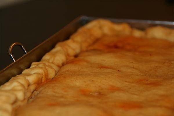 Receta de empanada de pollo y champiñones
