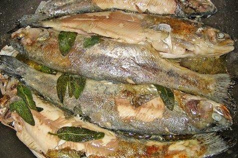 Trucha receta - Como cocinar la trucha ...